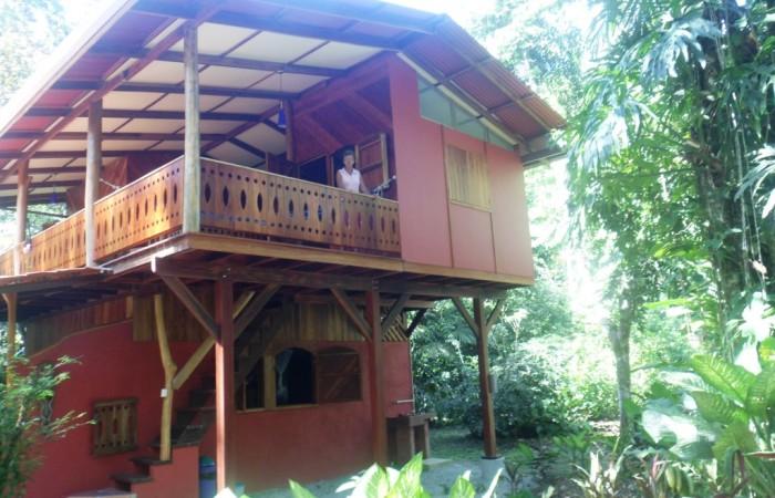 Bird Hause Loco Natural Talamanca